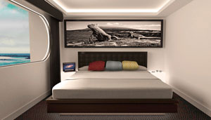Petrel Double-suite