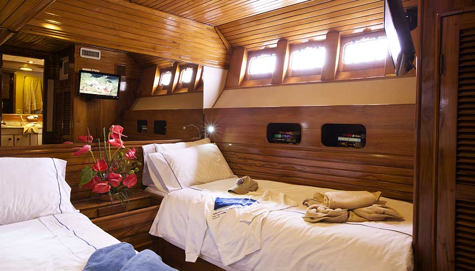 Galapagos Aggressor cabin