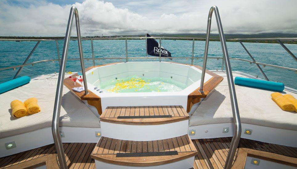 Majestic hot tub