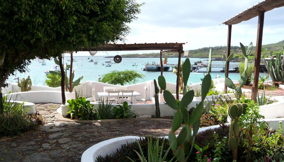 Casa Opuntia view of bay